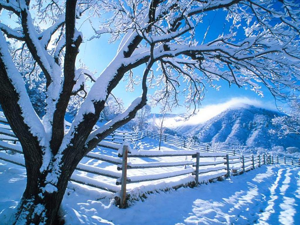 tube fond d'écran hivers